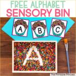 Free Alphabet Sensory Bin